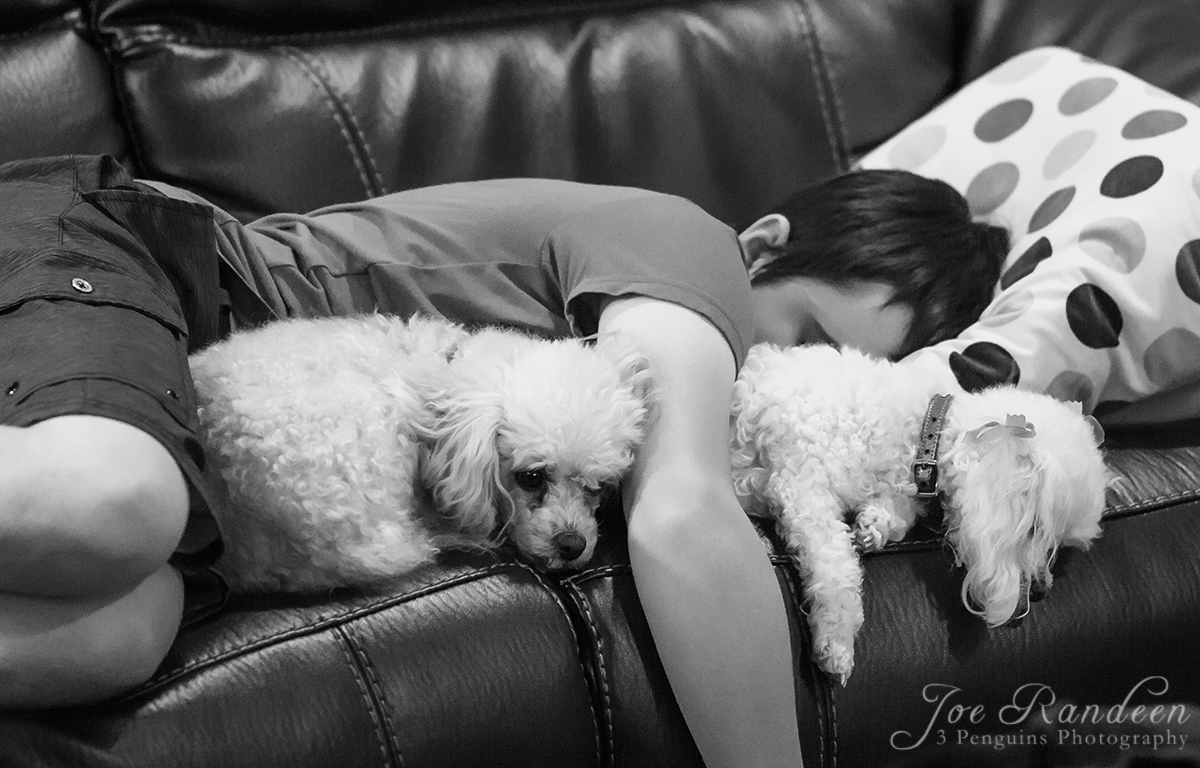 Boy and His Dogs